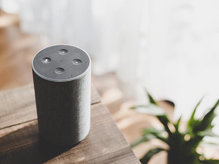 Home speaker per smart home